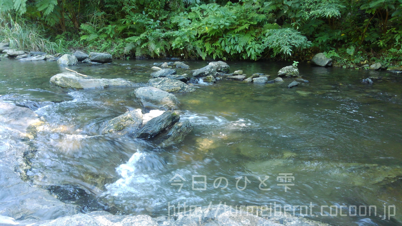 ある日の河原